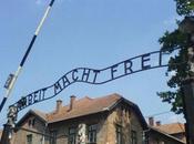 Subgéneros cine bélico Parte): sobre Holocausto