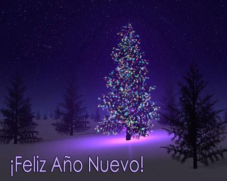 Feliz Año 2012!!!