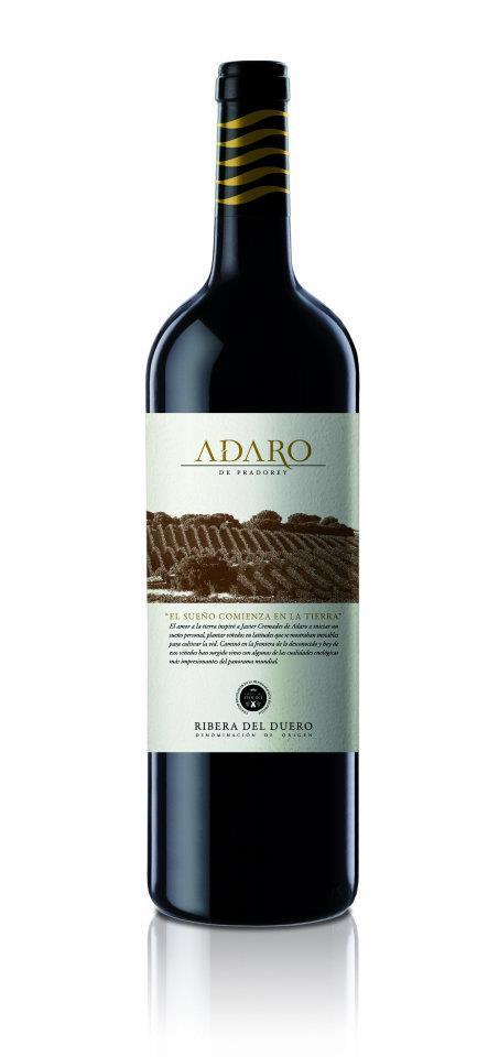 Adaro 2009