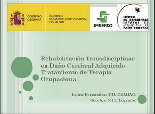 Rehabilitación transdisciplinar en Daño Cerebral Adquirido: Tratamiento de Terapia Ocupacional