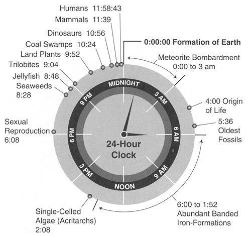 Origen y evolución de la vida, en 24 horas