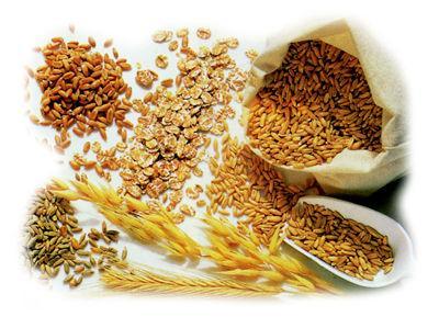 Fibra alimenticia: vital para la salud