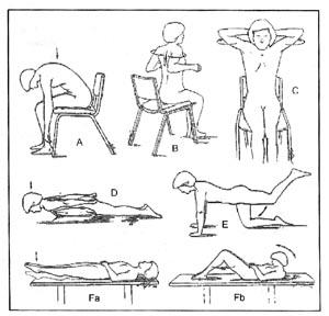 Ejercicios de rehabilitación recomendados para pacientes con Osteoporosis