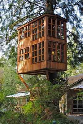 Un hotel en un árbol