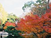 Seminario Jardines Japoneses 2012