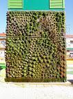 Jardín vertical Madrid.