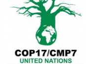 Entendiendo última Conferencia Cambio Climático COP17 Durban: espera?