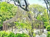 Plaza Mayo Zoológico