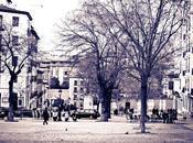 plaza Paja jardín Negro Anglona