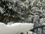 nieve caído toda Mallorca cubierto isla blanco