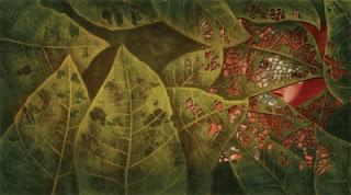El herbario de las hadas. Sébastien Perez / Benjamin Lacombe.