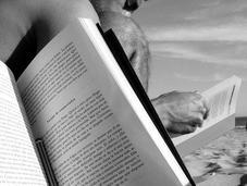 Libros para vacaciones: aprender, disfrutar ¿cambiar vida?
