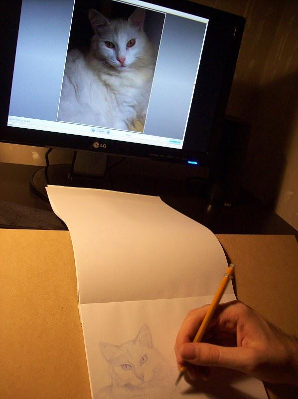 Práctica de dibujo con mi gato / Drawing practice with my cat