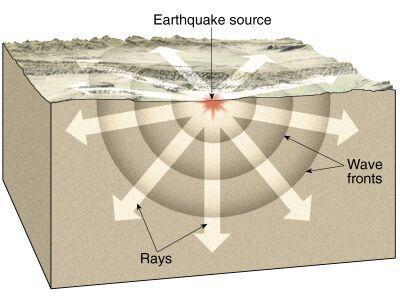 Los animales podrían percibir cambios químicos antes de un terremoto
