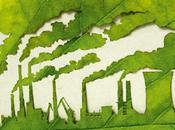 Plantas para planeta