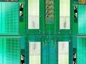 lanzará nuevos procesadores marzo