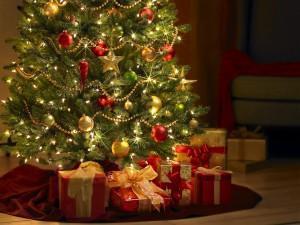 La Navidad y día de Reyes: ¡posadas, nacimiento, árbol de navidad, rosca de reyes y los regalos!