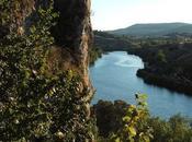Campos Soria