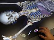 Anatomage mesa anatomía