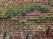 Comparativa entre sistemas constructivos jardines verticales