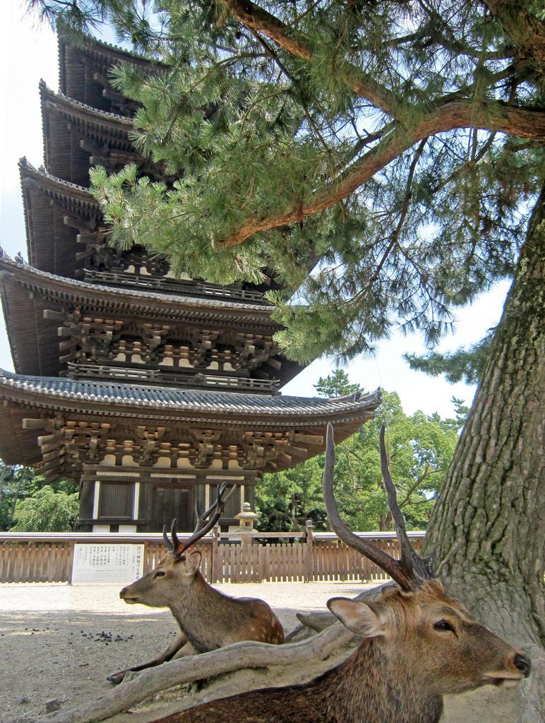 ¿Por qué las pagodas de Japón no se caen con los terremotos?