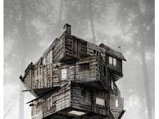 cabin woods película año?