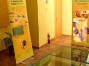 Exposición sobre Desarrollo Sotenible Puertollano (Ciudad Real)