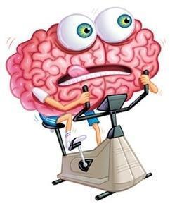Mejora de las capacidades cognitivas por medio de la estimulación de la plasticidad sináptica