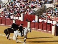 empresa Malagueta incumple Reglamento Taurino Andalucía