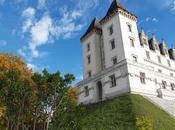 Pau, lección Historia puerta Pirineos