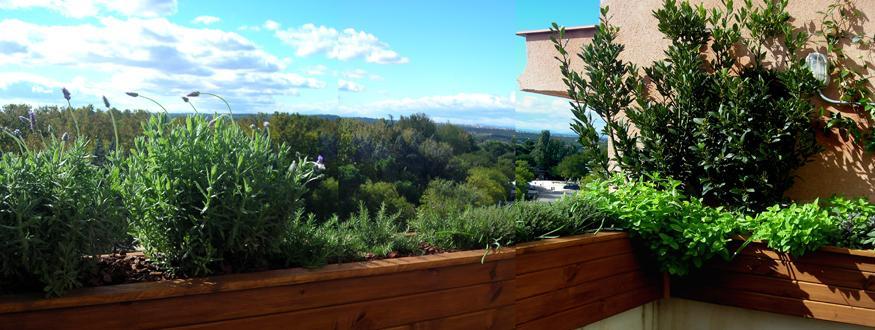 Jardin comestible en un atico paperblog - Jardines en aticos ...