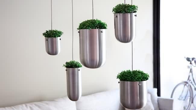 Tu jard n flotante alrededor de tu casa creado por for Jardines interiores modernos
